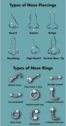 Nose Piercing Different Types Of Nose Rings Their Meaning