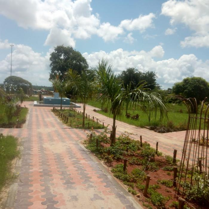 A section of the Wote Green Public Park in Wote, Makueni County