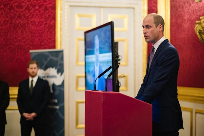 Prince William addressing guests during the fourth Conference on Illegal Wildlife Trade in London