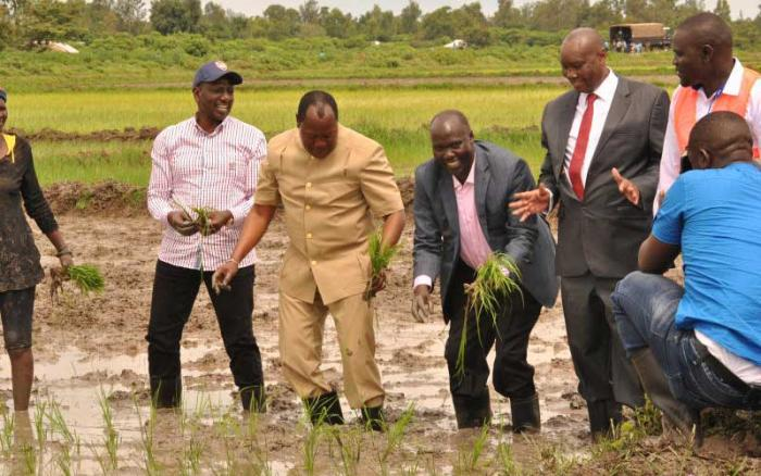 Image result for Ruto launch Lower Nzoia Irrigation project