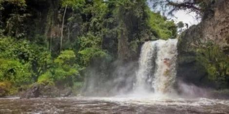 A section of the Nyamindi River in Kirinyaga County