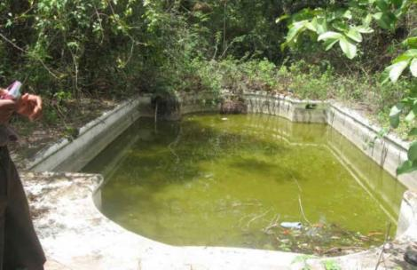 A swimming pool at a ranch once owned by VP Joseph Murumbi