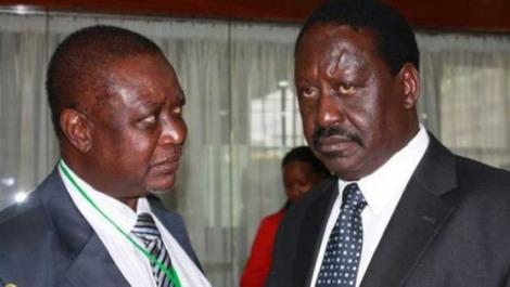 Former Prime Minister Raila Odinga (right) and his brother Oburu Odinga.