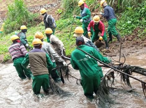 Member of Komb Green Solutions participating in a clean-up exercise along Nairobi River on July 20, 2020.