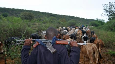 An image of pastoralists
