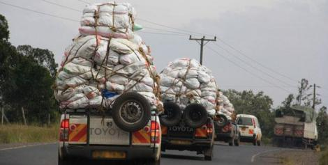 File image of Miraa truck drivers