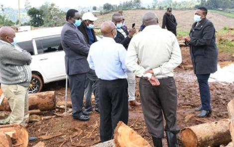 Murang'a Woman Representative Sabina Chege at Gituamba Eucalyptus Plantation on August 20, 2020.