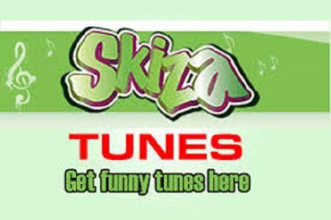 The Skiza music platform