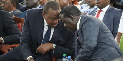 Leaked Info Exposes Raila's Next Govt Job