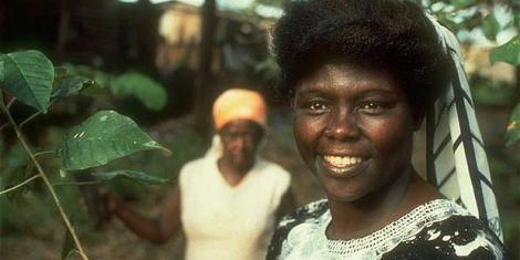 How Wangari Maathai Outsmarted Her Husband After Divorce - Kenyans co ke